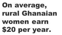 women earn 20 dollars annually