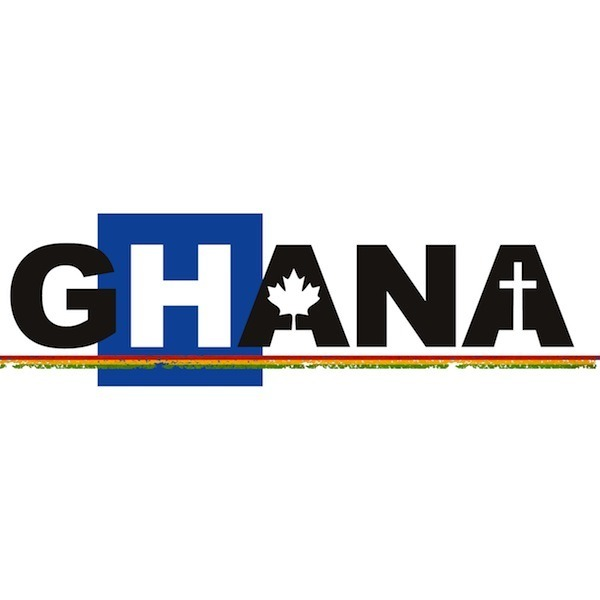 Ghana Health Team logo